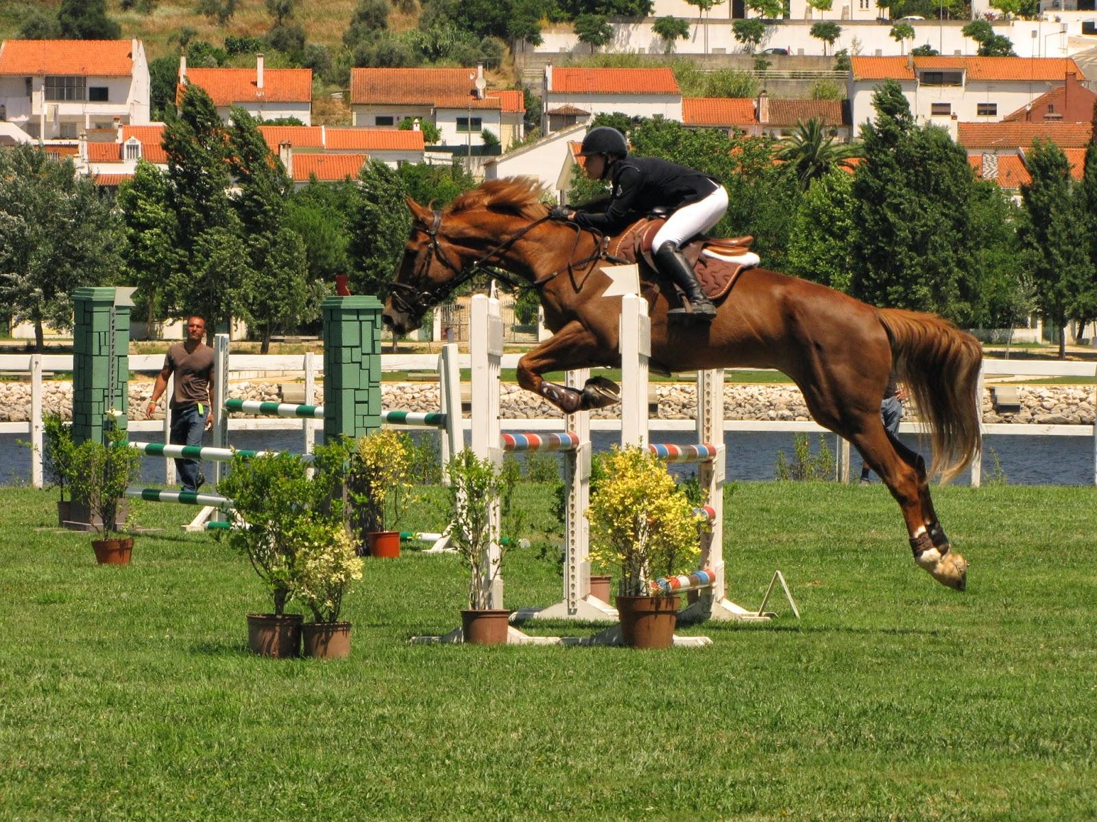 Jogos de correr com cavalos