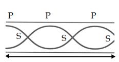 Materi Fisika Gelombang Bunyi