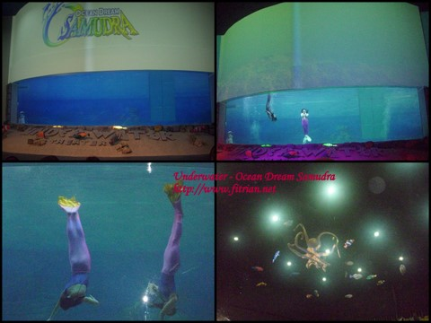 Ocean Dream Samudra & Sea World