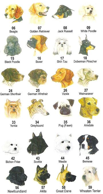 Dog Breeds In Alphabetical Order