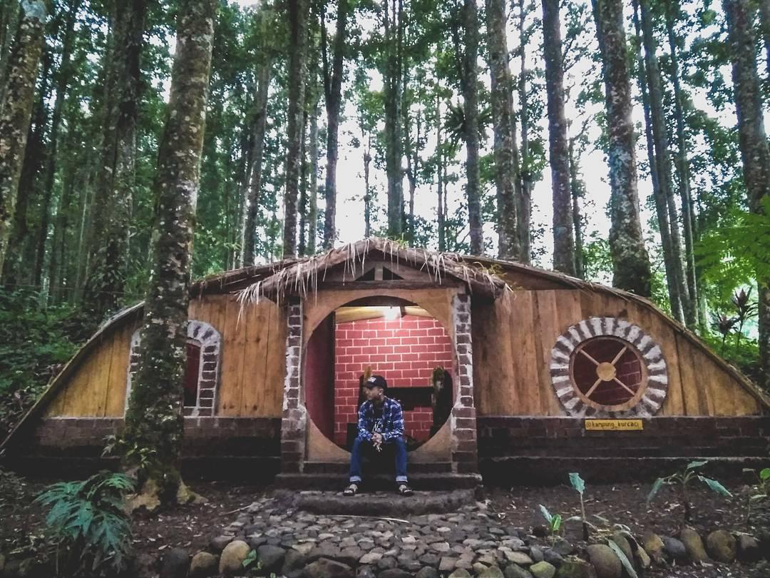 [CoC Regional: Lokasi Wisata] The Hobbit dari Purbalingga