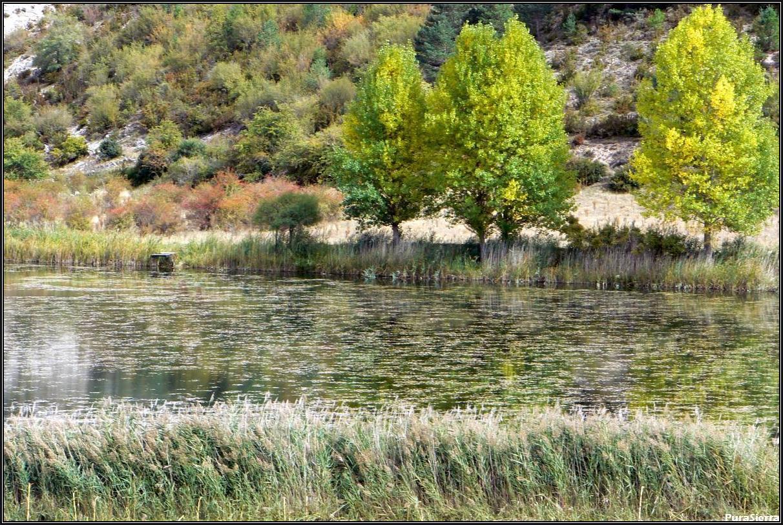 Laguna Del Marquesado (Arroyo Del Soto, Laguna Del Marquesado). Vista 1