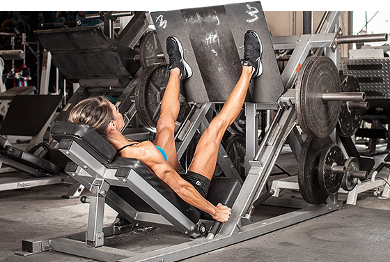 muscle mass and power