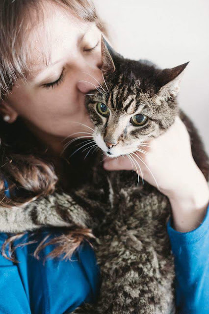 Adopting a senior cat with special needs