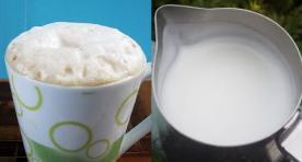 steamed milk vs foamed milk