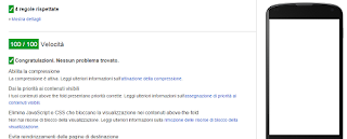 Risultato test Imanici su Google Speed Insights