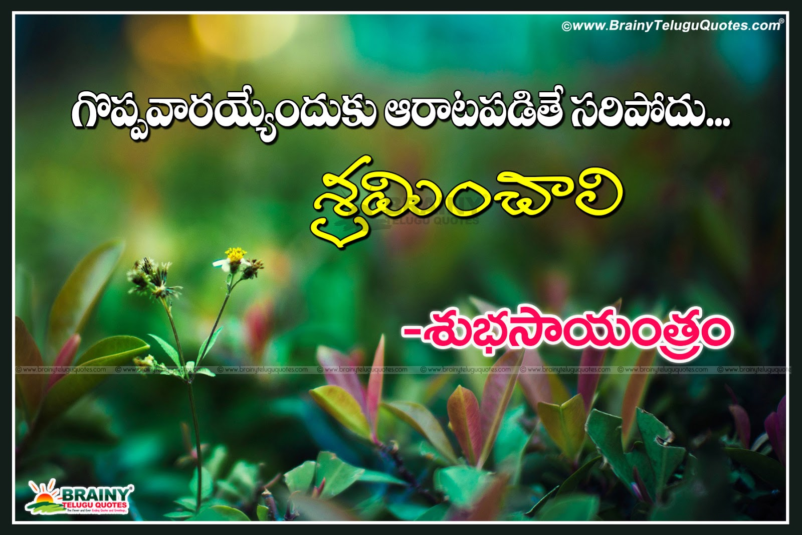 Here Is Latest Good Evening Telugu Quotations Wallpapers Quotes Nice Inspirational