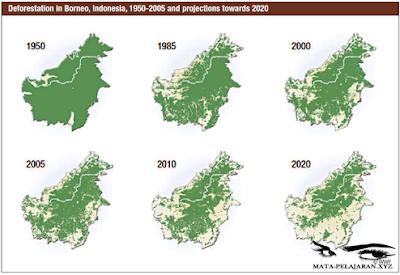 Penyebab Rusaknya Flora Fauna, Pencemaran, Exploitasi Hutan, Perburuan Liar, Penggunaan Pestisida, Penggunaan Pupuk Buatan.