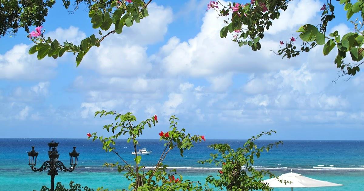 O MELHOR DA JAMAICA | Viajar pelo Mundo!