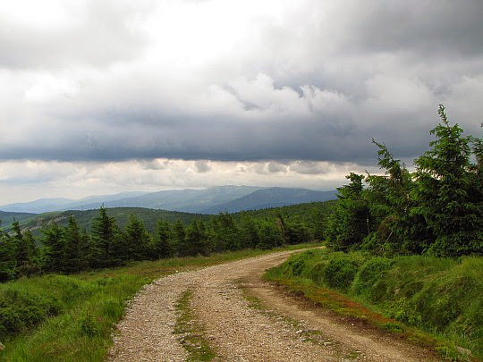 Droga na zboczach Wysokiej Kopy.