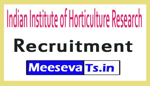 Indian Institute of Horticulture Research IIHR Recruitment