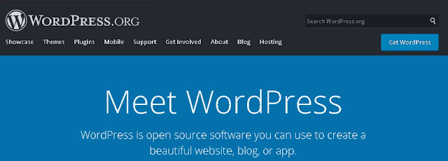 Learn Professional WordPress Theme Development From Scratch