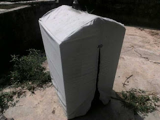 Ternyata mandi sauna cucak ijo makin ngacor