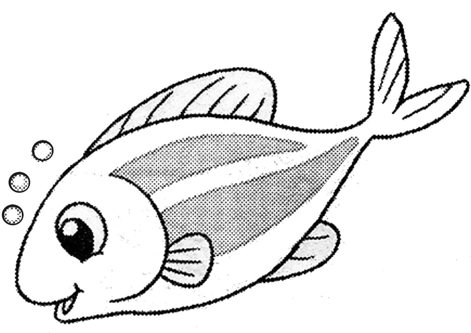 Lukisan Kartun Haiwan Cikimm Com