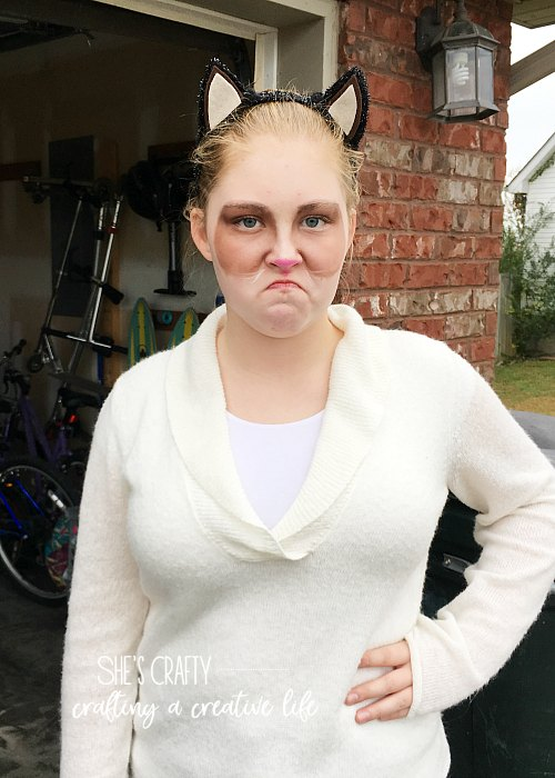 grumpy cat costume- face make up