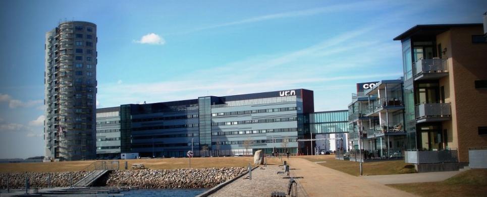 10 Best Colleges in Denmark for International Student