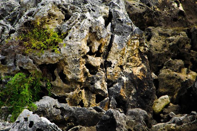 Скали-Rocks