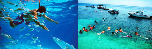 CatchThatBus Pulau Redang