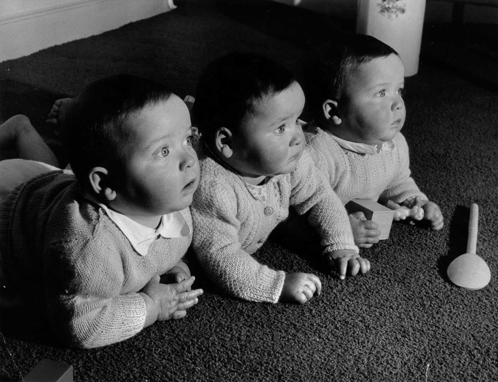 The Finslater triplets at home, 1955.