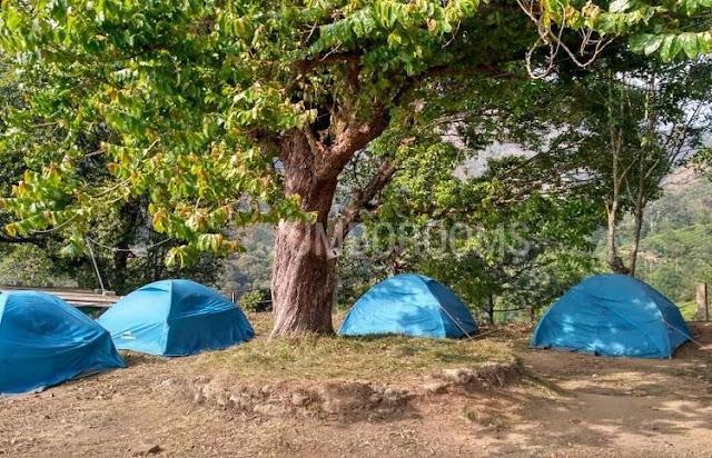 Camping spots in Munnar, Munnar camping, Tent Camping With Campfire In Munnar, munnar trekking and camping