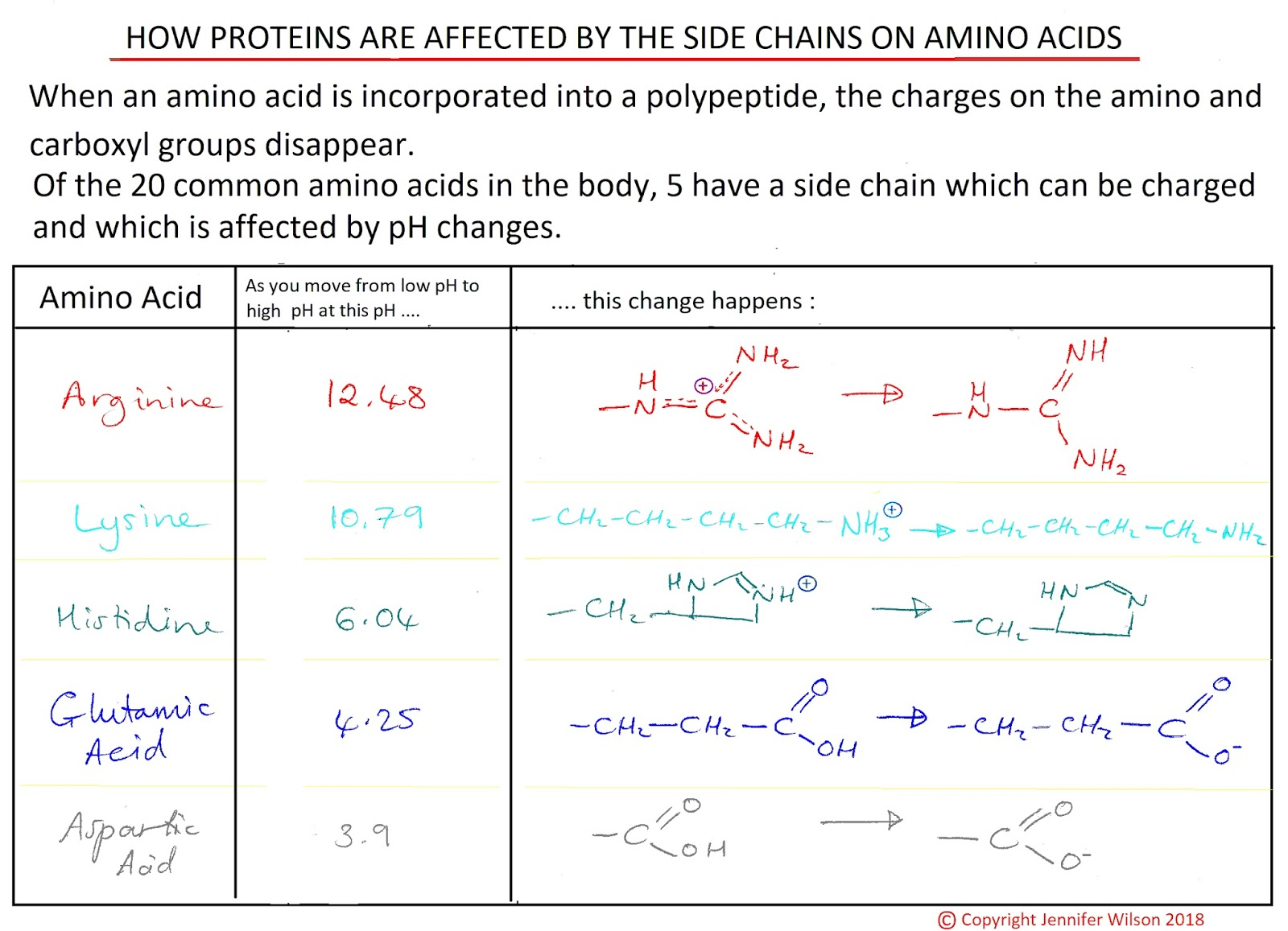 Amino acids side chains at different pHs