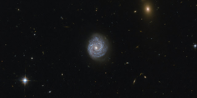 Hubble gazes into a black hole of puzzling lightness