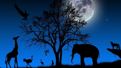 تفسير حلم الحيوانات لابن سيرين
