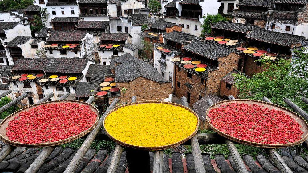 Fruit Drying in Huangling