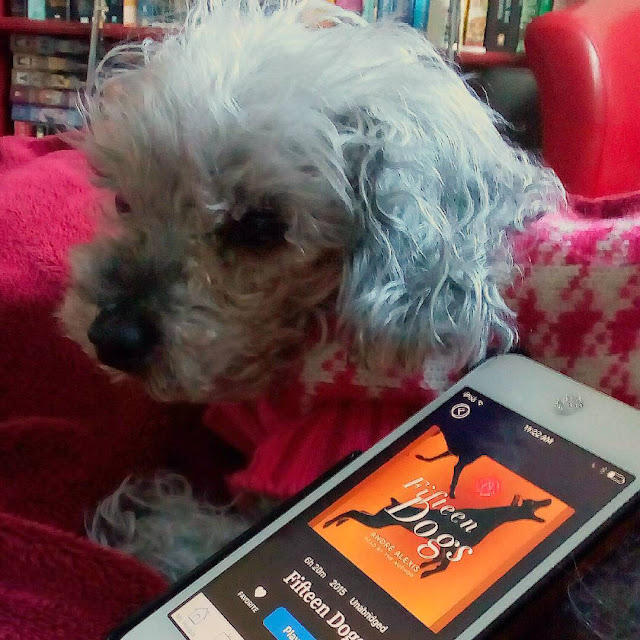 Murchie, dressed in a pink and cream houndstooth sweater, lies with a white iPod propped up againt his side. It has the orange cover of Fifteen Dogs on its screen.