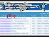 SK Tunjangan Profesi TW 4 Mulai Disalurkan Hari ini. Silakan Cek..