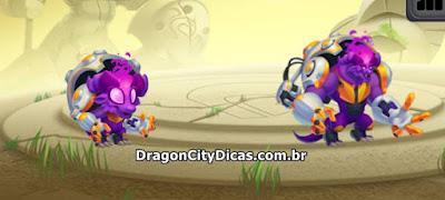 Dragão Tam-Tam - Informações