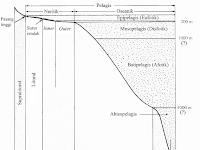 Klasifikasi Lingkungan Laut dan Zonasi Lingkungan Laut