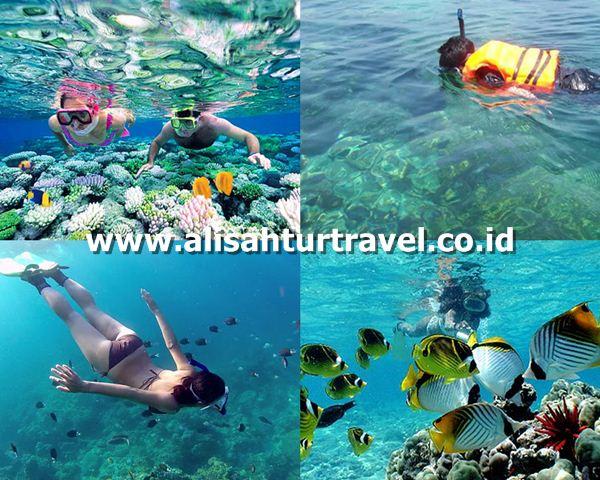 paket wisata pulau pari murah