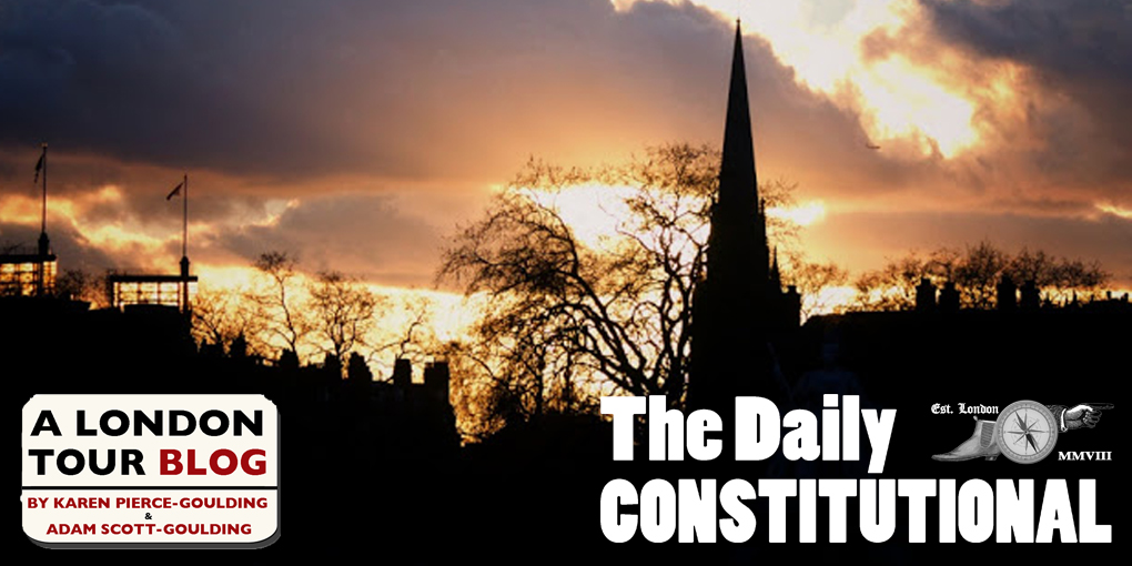 The Daily Constitutional