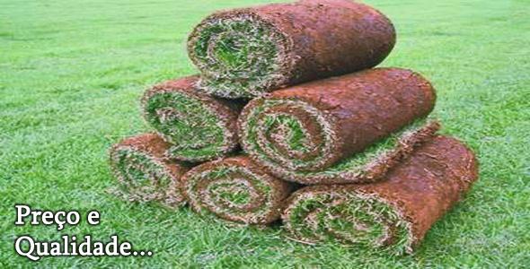 pedras para jardim em sorocaba: POLICIAL SOROCABA E REGIÃO ONLINE: BARROS GRAMAS EM ITAPETININGA SP