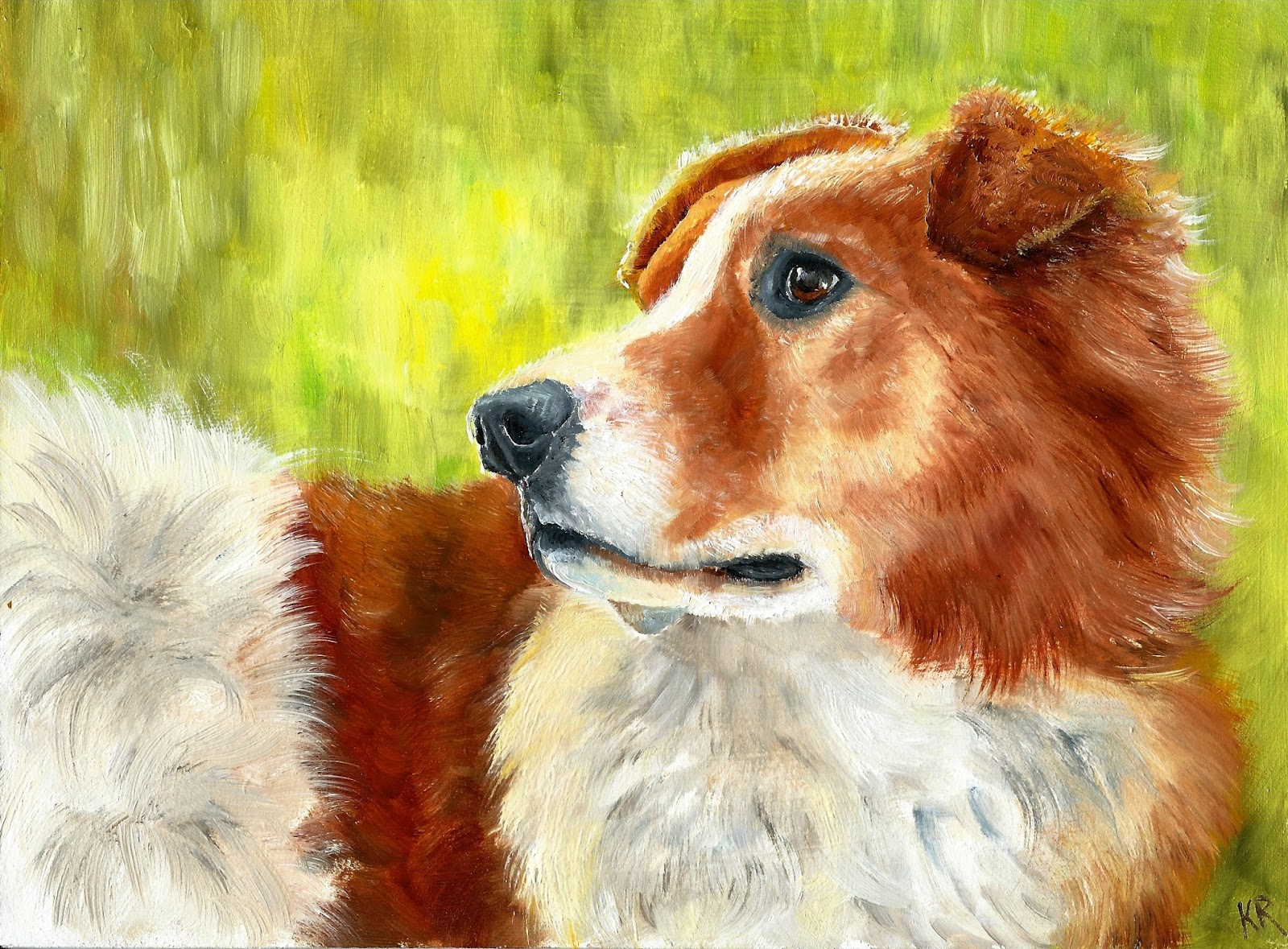 oil painting of a red collie in bright sunlight. A pet portrait by Karen