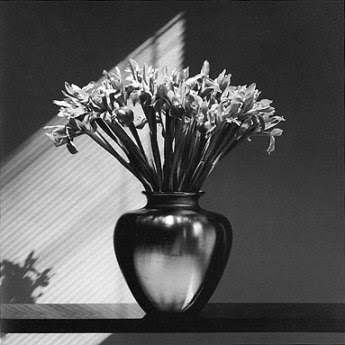 El prólogo de Patti Smith robert mapplethorpe flores 1