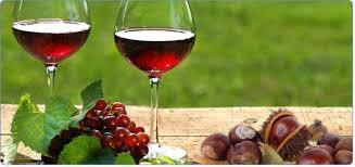 S. Martinho - magusto - vinho e castanhas