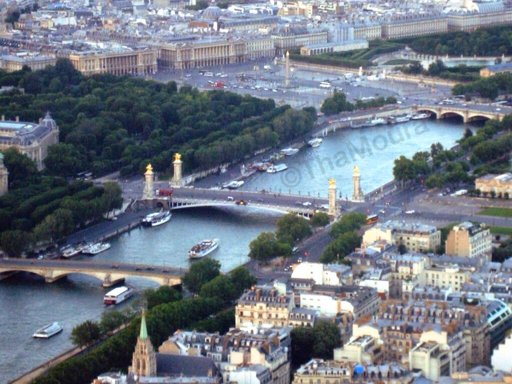 ponte alexandre II Paris