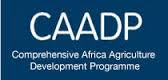 Africa Must Collectively Innovate to Industrialise Agriculture – CAADP CEO