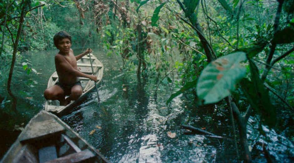 Resultado de imagen para medio ambiente latinoamérica