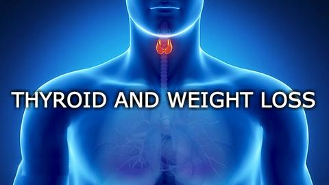 Your Thyroid and Body Weight loss - The Connection is Real