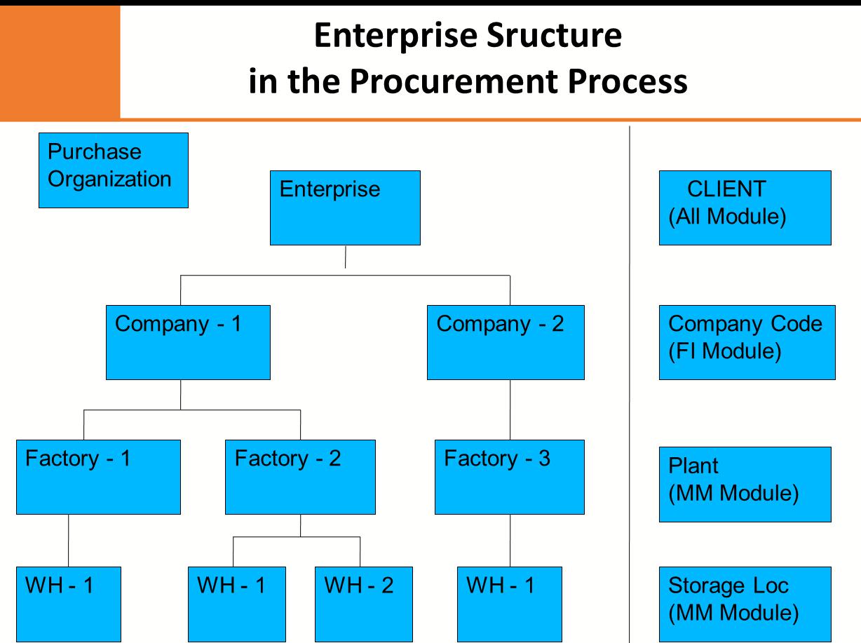 Sap Mm Organizational Structure In Sap Procurement