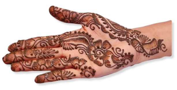 Indain Bridal Mehndi