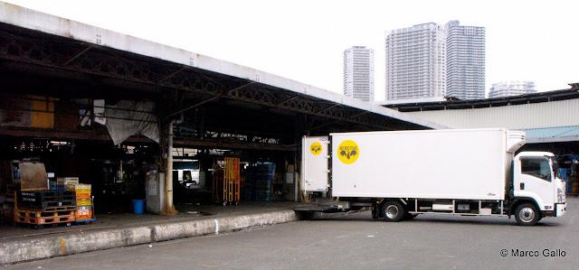 MERCADO DE TSUKIJI. TOKIO, JAPÓN