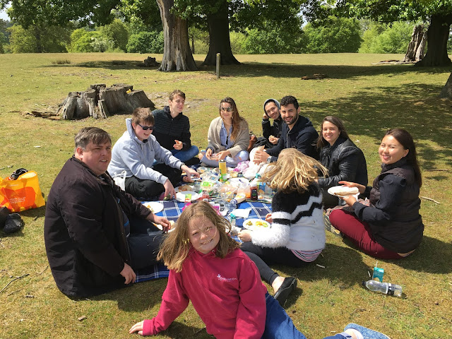knole picnic