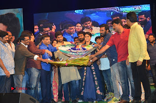 Nenu Local Audio Launch Stills  0404.JPG