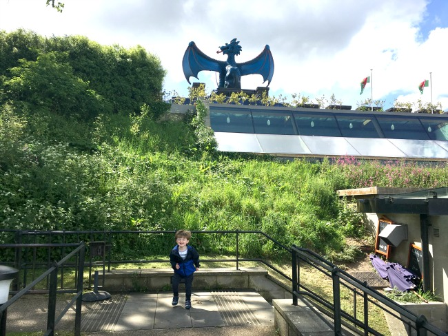 #MySundayPhoto-number-21-Cardiff-city-champions-league-football-toddler-in-front-of-dragon