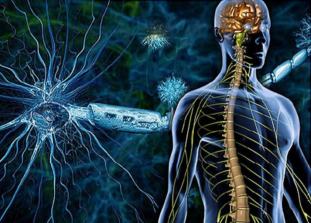 16 Sintomas Precoces da Esclerose Múltipla