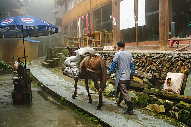 Un homme et son cheval à Ping'an
